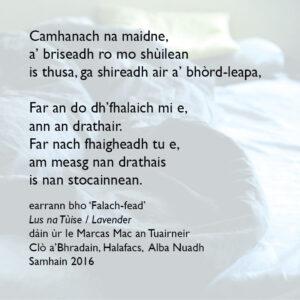 Falach-fead / Hide-and-seek - poem excerpt