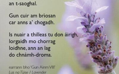 Gun Ainm VIII / Unnamed VIII – poem excerpt