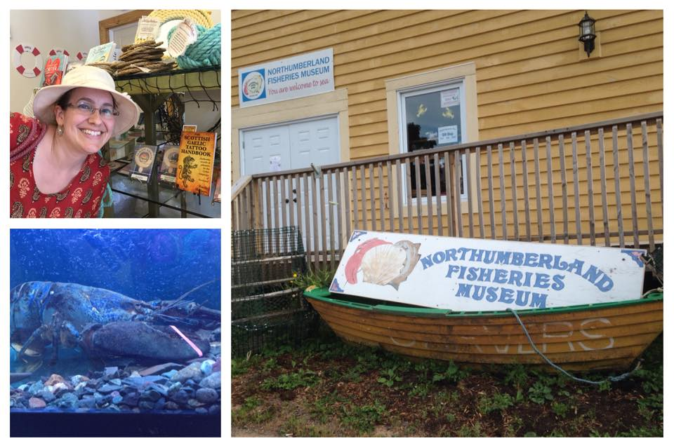 New retailer: Northumberland Fisheries Museum