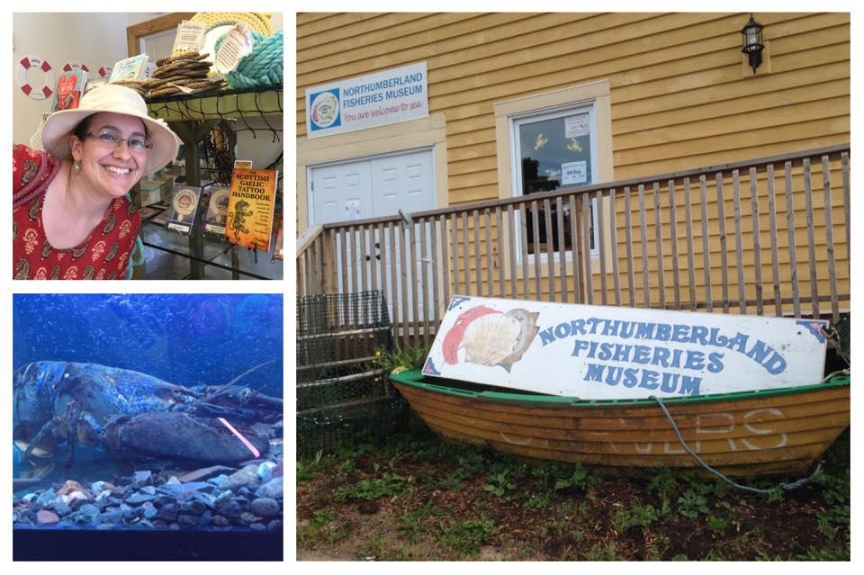 New retailer: Northumberland Fisheries Museum