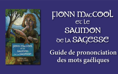 New Fionn MacCool Teaching Resource