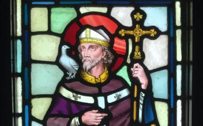 Happy Saint David's Day!