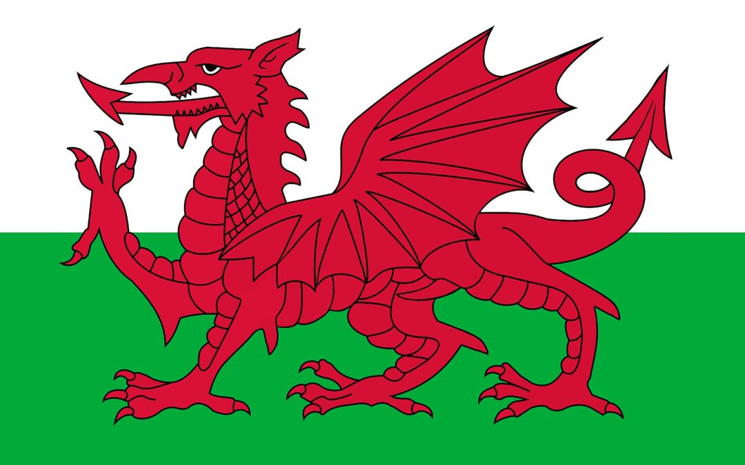 Dydd Gŵyl Dewi Hapus! | Happy St. David's Day!
